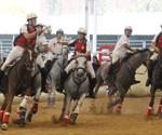 DISCIPLINA HORSEBALL A EQUUS, SALÓ DEL CAVALL A GIRONA
